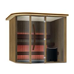 Vision Sauna